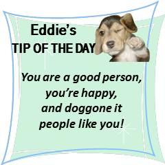 Eddie's TOTD