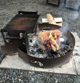 Cheery campfire